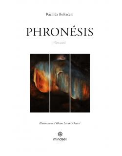 E-book - Phronésis
